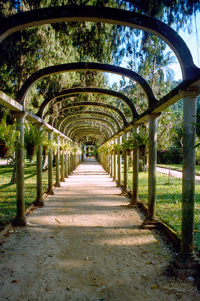 Rio Botanical Gardens in 1979.