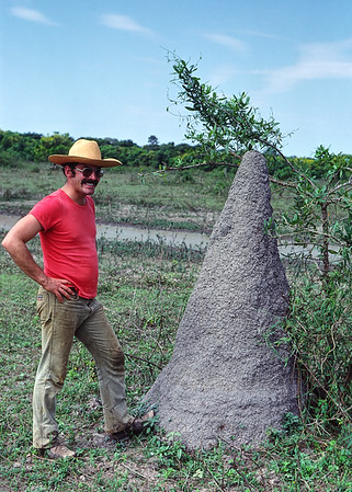 Termite mounds dotted the Pantanal landscape. Many were bigger than this one. I've seen similar mounds in Africa. The color of the structures vary with soil and termite species.