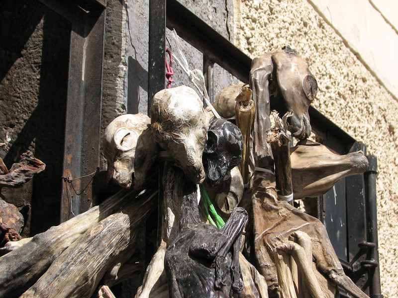 unborn foetus of alpaca used as medicine! superstition? (Peru 2009, indoor market place, Cusco 3360m. )