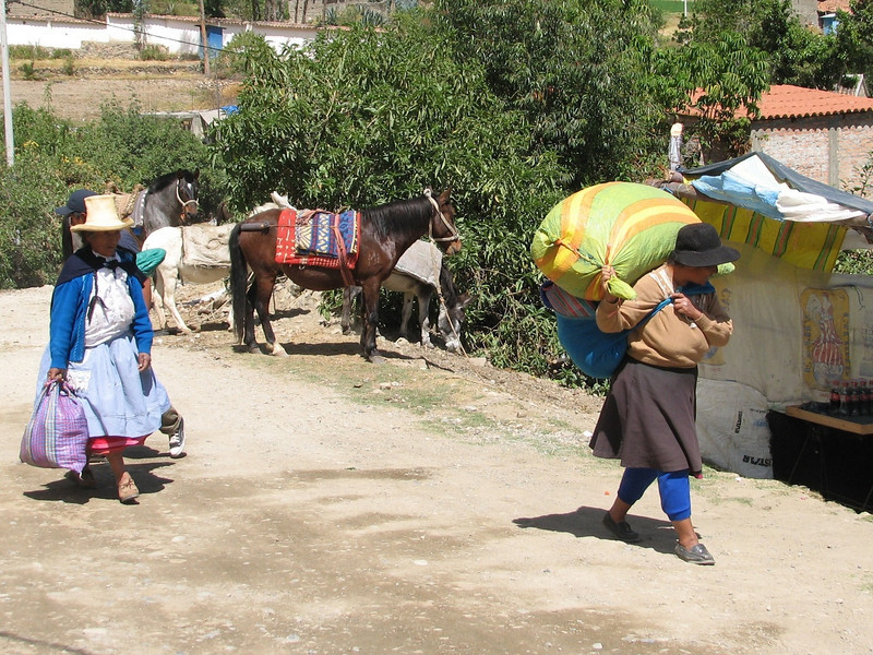 Arranging horses and food for the track (Peru 2009, Cashapampa (2950m),Cordillera Blanca)