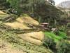 scarce habitation (Peru 2009, Cordillera Blanca)
