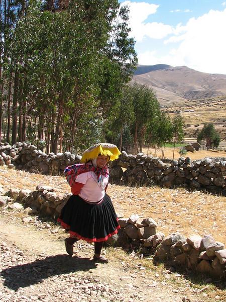 route Pacchanta 4300m - Tinqui 3900m. (Peru 2009, near Pacchanta 4300m. Nevado Ausangate)