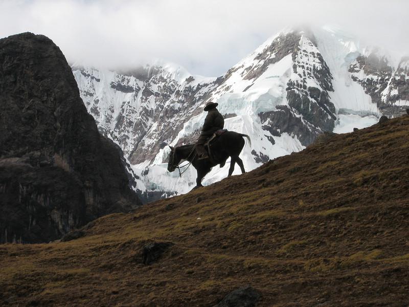herdsman of Lamas (Peru 2009, Nevado Ausangate)