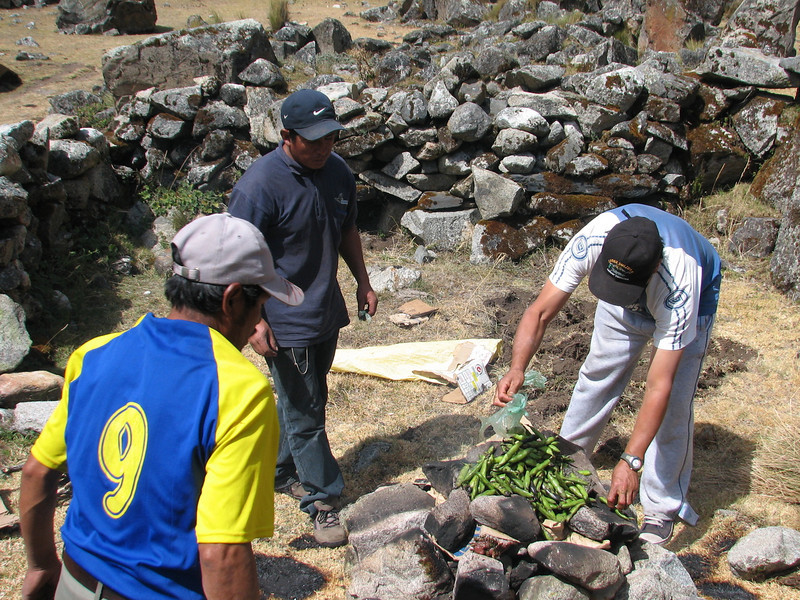 Pacchamanca, cover the hot stones with broad beans, phase 7 (Peru 2009, Cordillera Blanca)