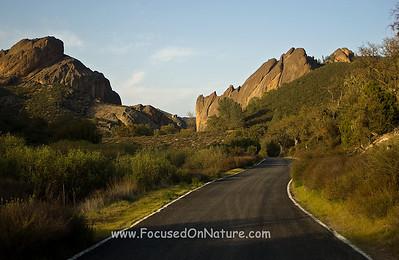 Entrance Road, Pinnacles National Park