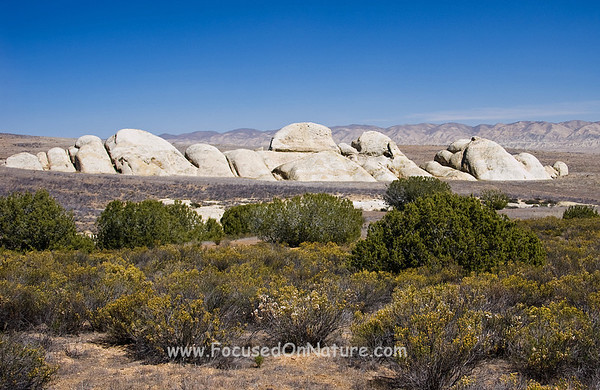 Shelby Rocks, Carrizo Plain