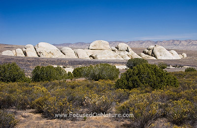 Shelby Rocks, Carrizo Plain