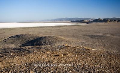 Soda Lake, Carrizo Plain