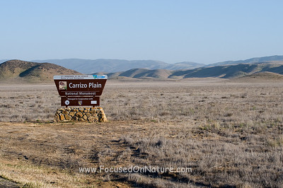 Carrizo Plain Entrance