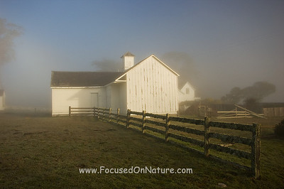 Pierce Point Ranch in the Fog
