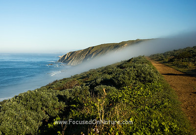 Pierce Point Trail