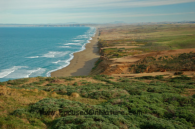 South Beach, Point Reyes National Seashore