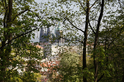 Prague 2011 - © Mark Roddis