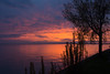 pelee - sunset-5170049