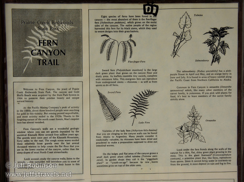 Fern Canyon trail brochure (7/1/2008, Fern Canyon trail,  Prairie Creek Redwoods SP, Redwoods trip)