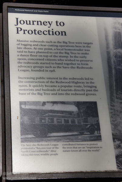 """""""Journey to Protection"""" sign about the movement to protect the Redwoods (7/1/2008, Big Tree parking lot,  Prairie Creek Redwoods SP, Redwoods trip)"""