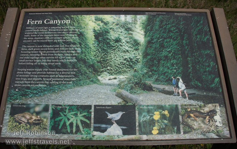 Sign about Fern Canyon (7/1/2008, Fern Canyon trail,  Prairie Creek Redwoods SP, Redwoods trip)