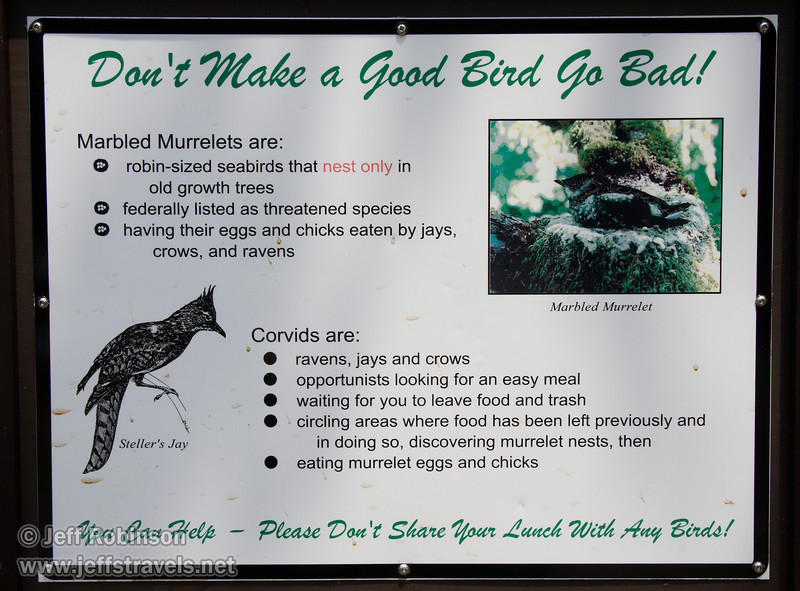 """""""Don't Make a Godo Bird Go Bad!"""" sign about the Marbled Murrelet and Corvids (ravens, jays, and crows) (7/1/2008, Big Tree parking lot,  Prairie Creek Redwoods SP, Redwoods trip)"""