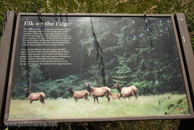 Sign about Roosevelt Elk in Elk Meadow off Davidson Rd.  (7/2/2008, Redwood NP, Redwoods trip)