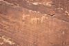Petroglyphs near Butler Wash