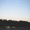 Seattle Area Forest with Moon