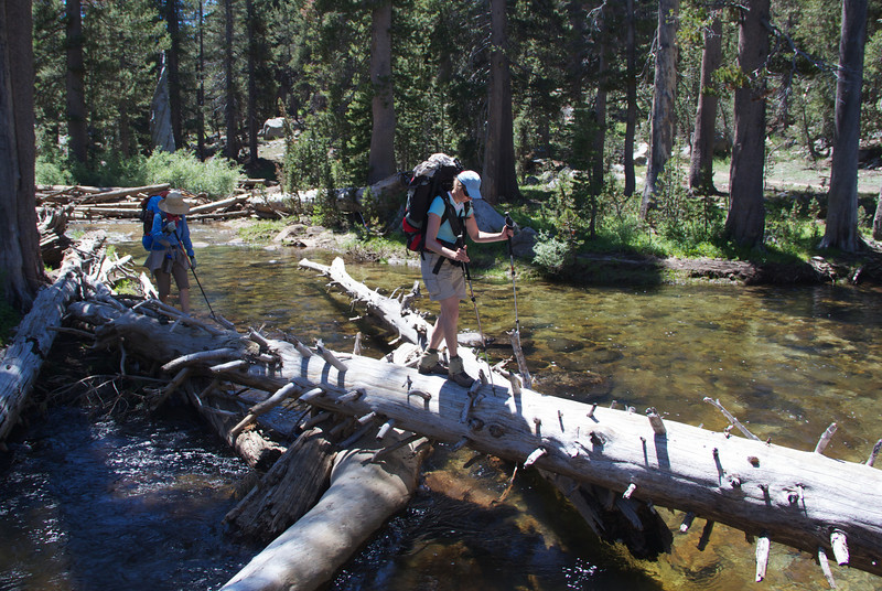 Crossing at Cow Meadow