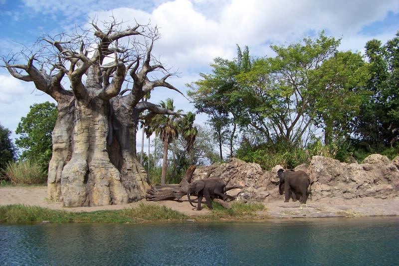 Elephants on the Kilimanjaro Safari ride