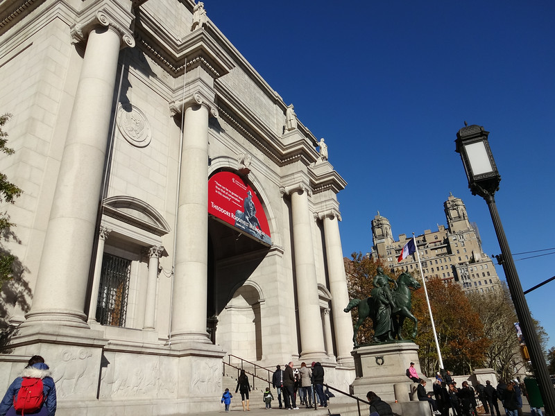 The advantage of not running a marathon today is that we get to spend all day at the Museum of Natural History (which really takes multiple days).