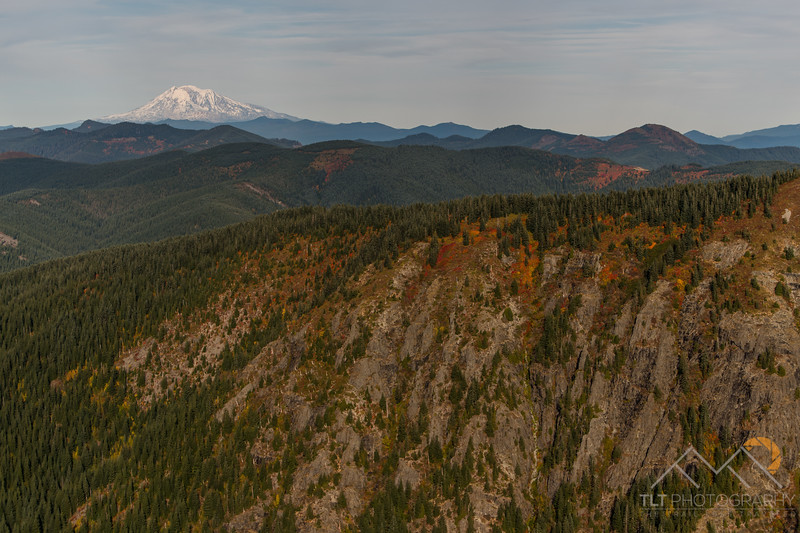 Mount Adams over some fall colors.