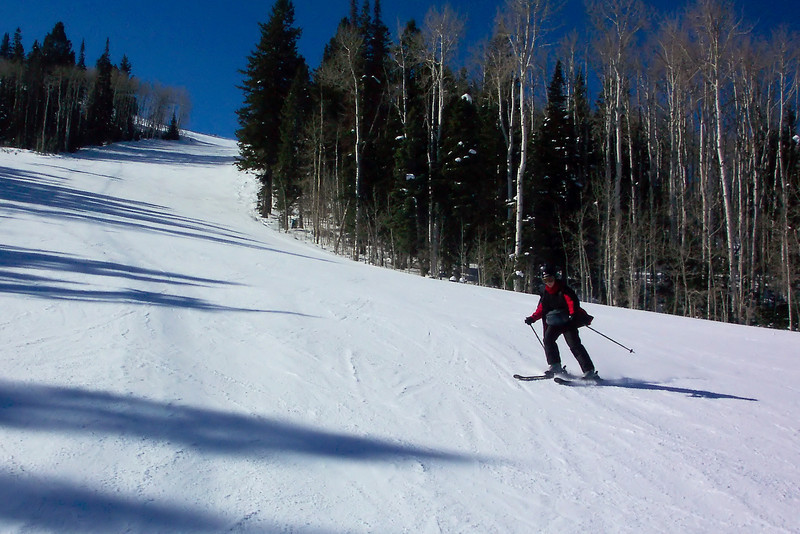 A shot of the brave Sir Patti hurtling down the slope (or something like that).