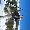 Nigel classic skiing