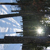 Walking on the Pioneer Trail