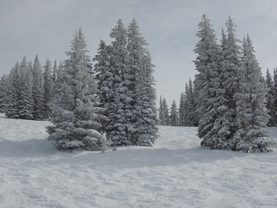 We kept getting fresh snow with warnings of more to come.