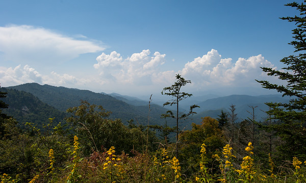 Scenery In The Smokies 1