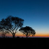Sunset in Kruger Park
