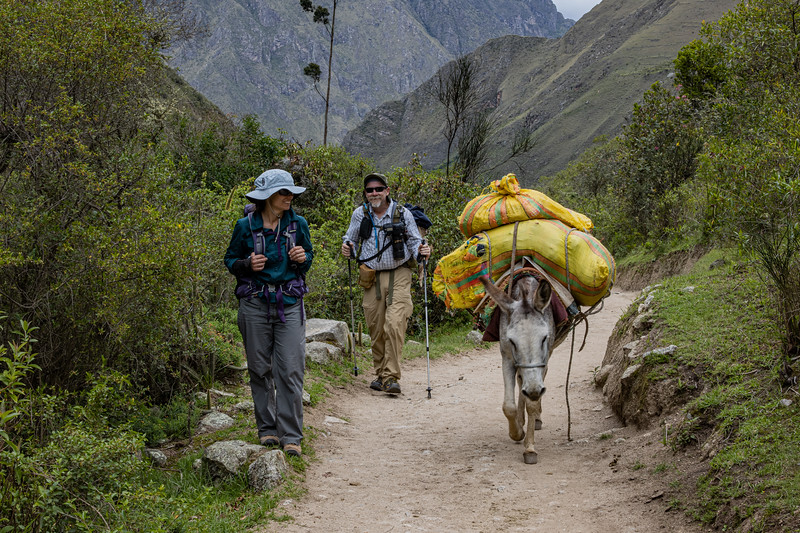 More than one way up the Inca Trail