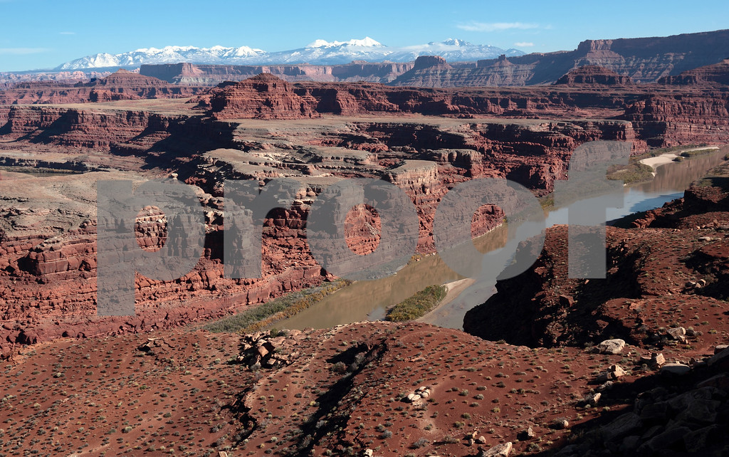 The Colorado River in Canyonlands National Park