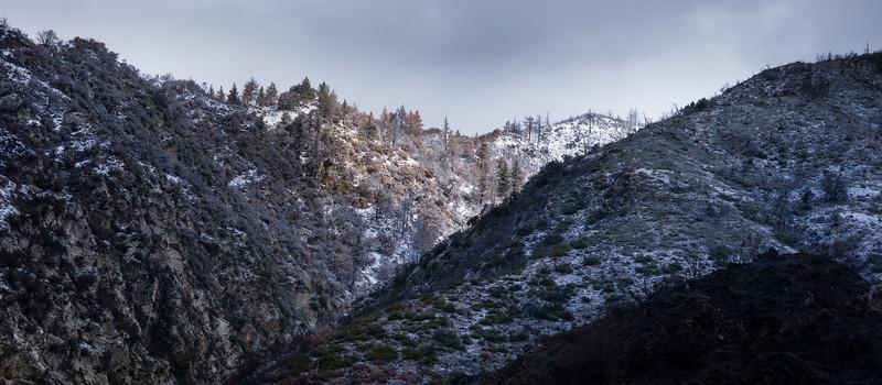 Snow Dusting, San Bernardino Mountains