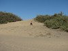 Stijn (Maspalomas dunes)