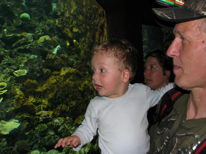 Aquarium (Palmitos Park)