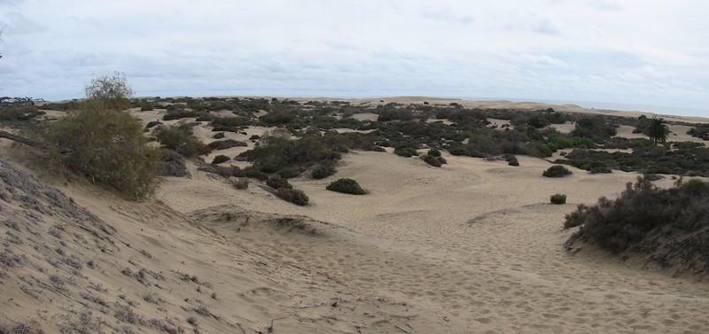 panorama Maspalomas dunes (South Gran Canaria)