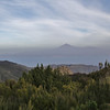 View at La Teide, Tenerife, from Bosque de Tejos