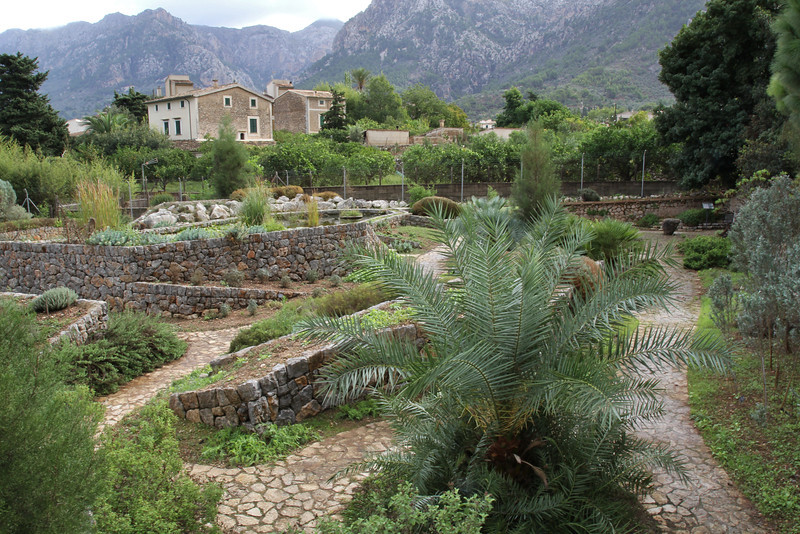 Gardi Botanice de Sóller,<br /> For more pictures go to ROCK GARDEN / OTHER GARDENS on this site.