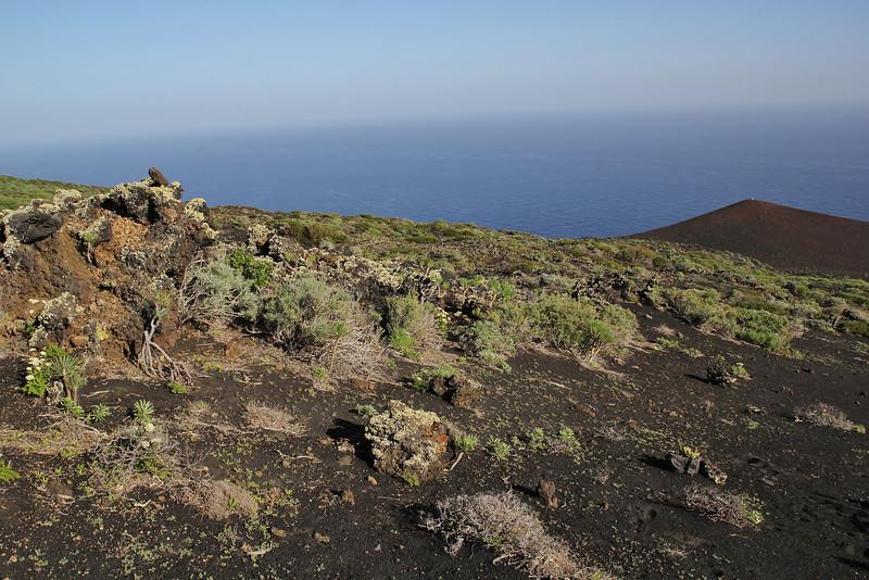 New vulcano, near Fuencaliente (Los Canarios)