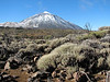 La Teide 3718m. (Tenerife)