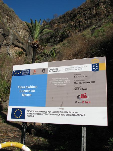 protected area near Masca (Teno, Tenerife)