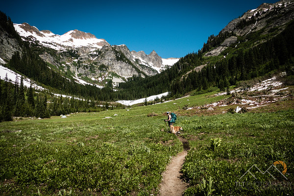 Heading towards the snowy Spider Gap Pass on the Phelps Creek trail.