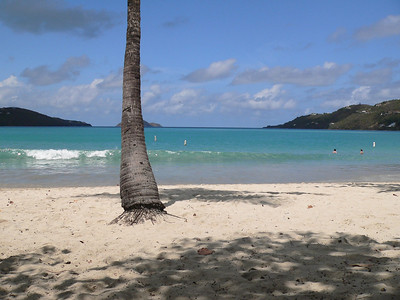 This is at the Magen's Bay beach area on St. Thomas.