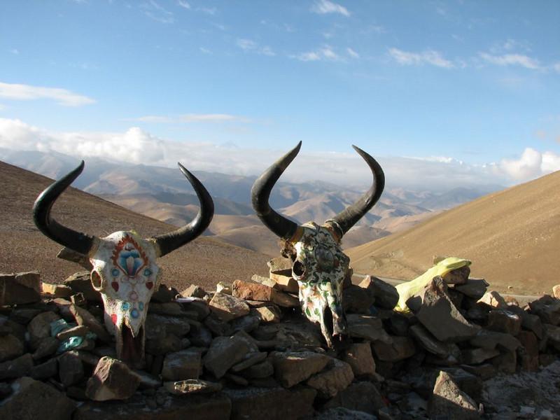 8 okt.  on the pass  Pang-La   5254m (tibet)