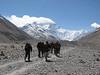 start expedition (Mount Everest )